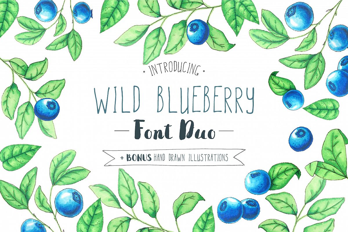 Wild Blueberry Font Duo example image 1