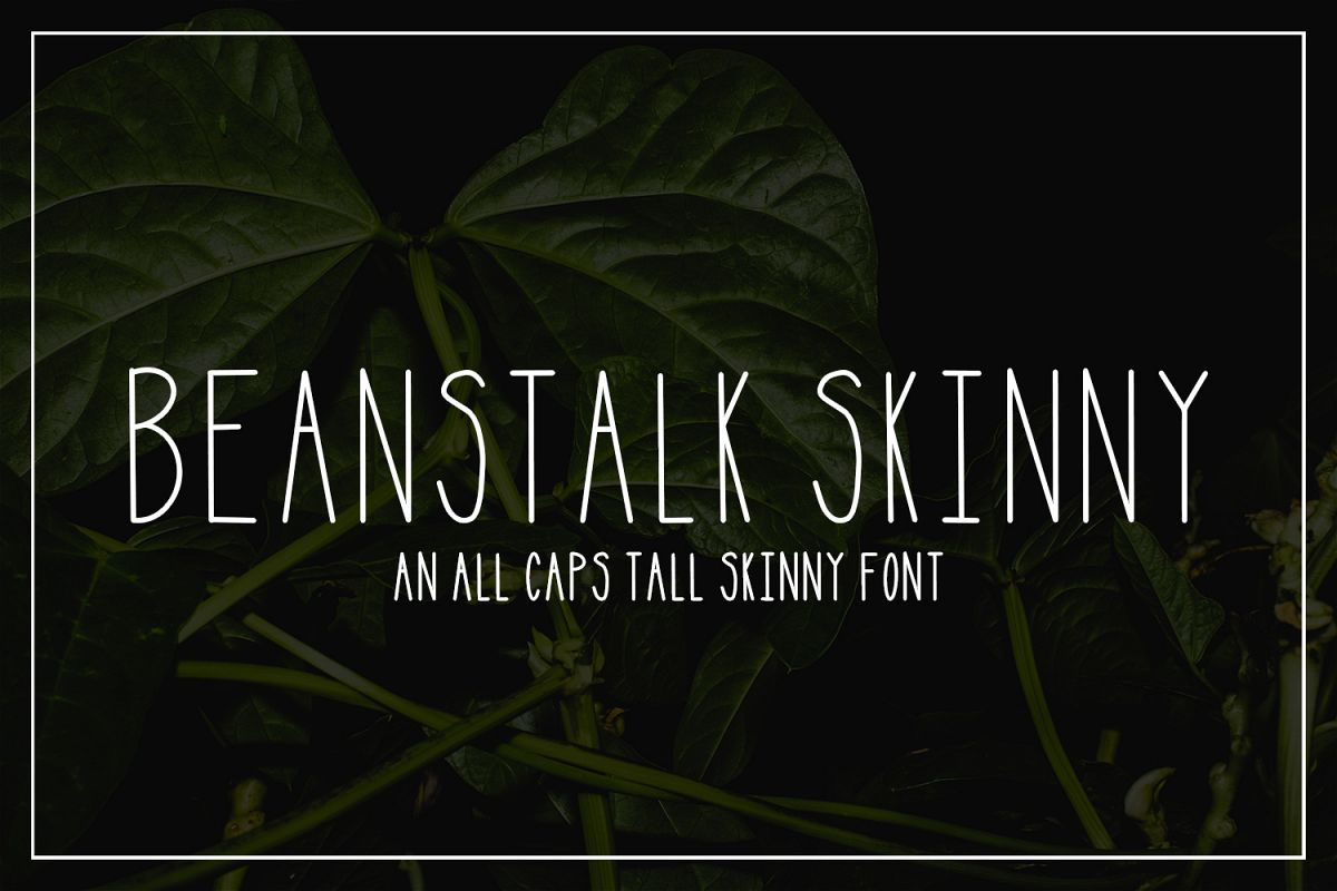 Beanstalk Skinny Font example image 1
