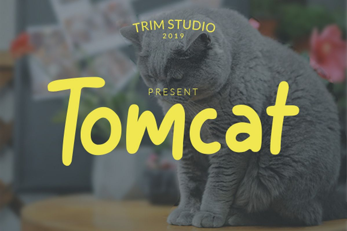 Tomcat - Cheerfull Day Font example image 1