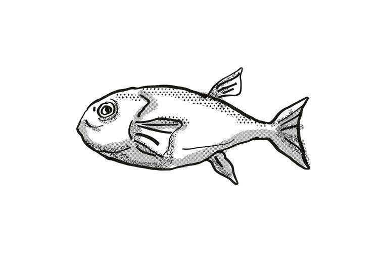 Brownback Toadfish Australian Fish Cartoon Retro Drawing example image 1
