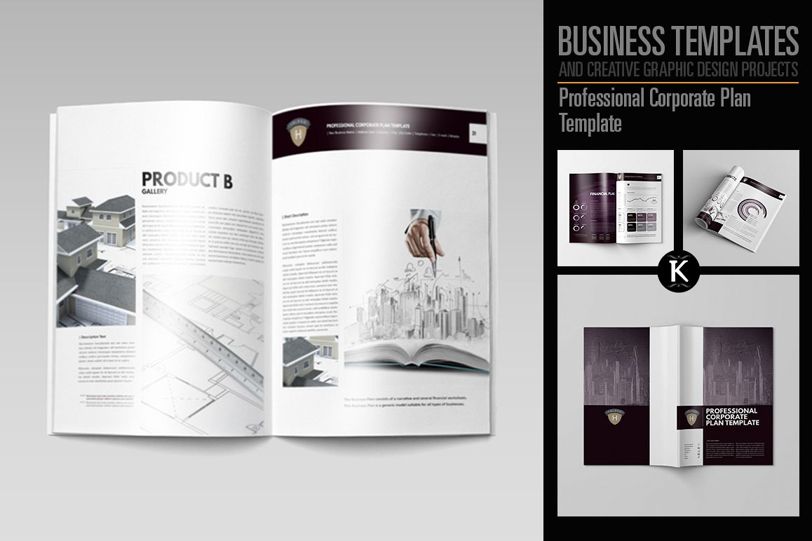 Professional Corporate Plan Template example image 1