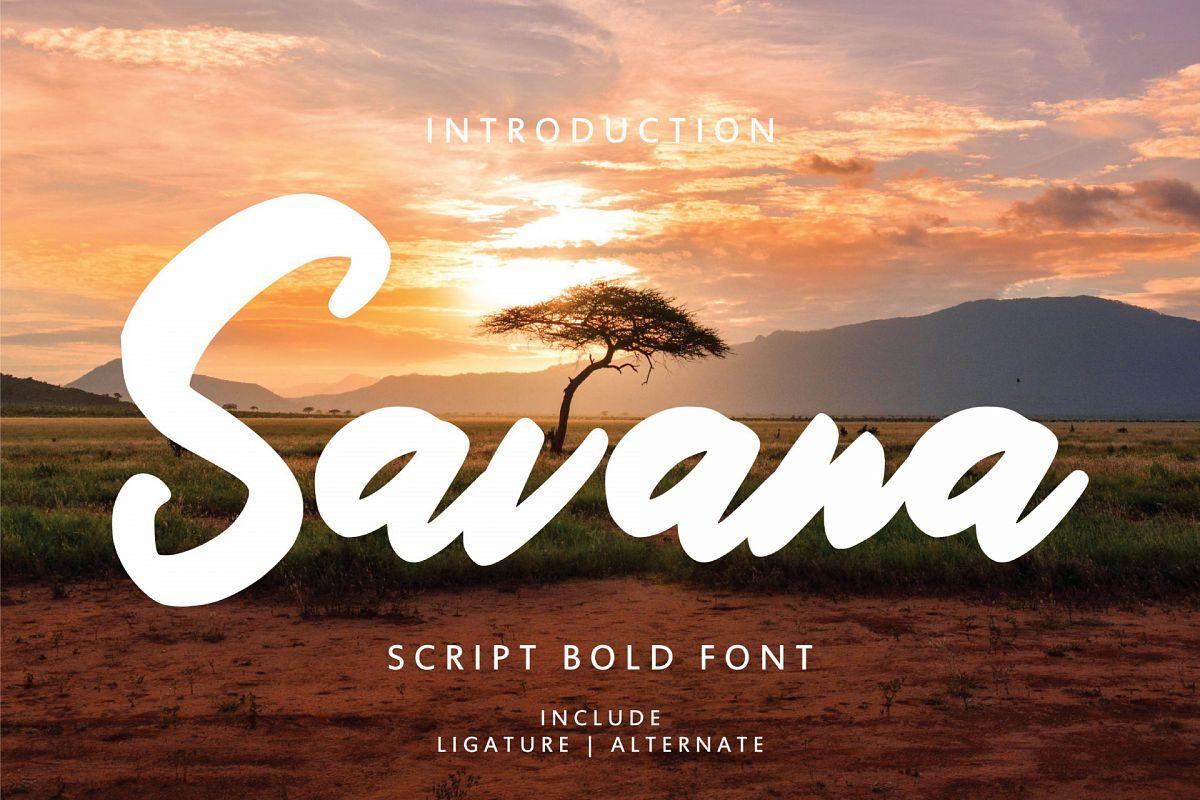 Savana - Script Bold Font example image 1