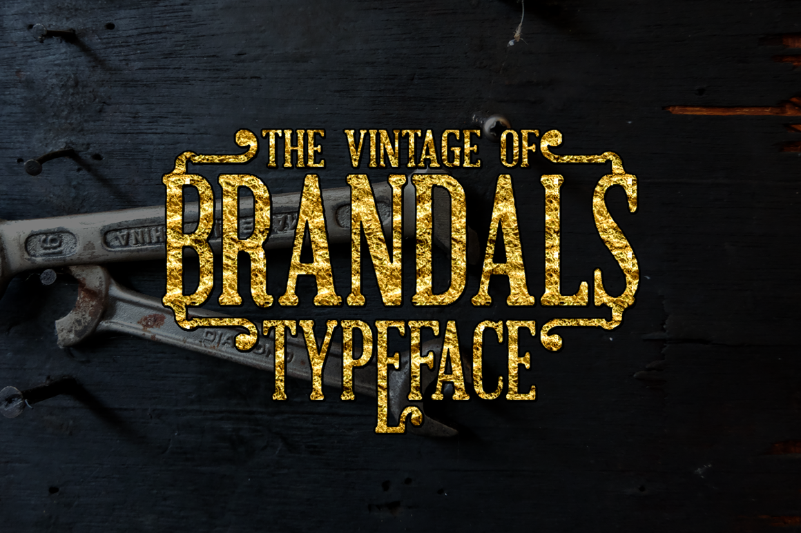 The Brandals example image 1