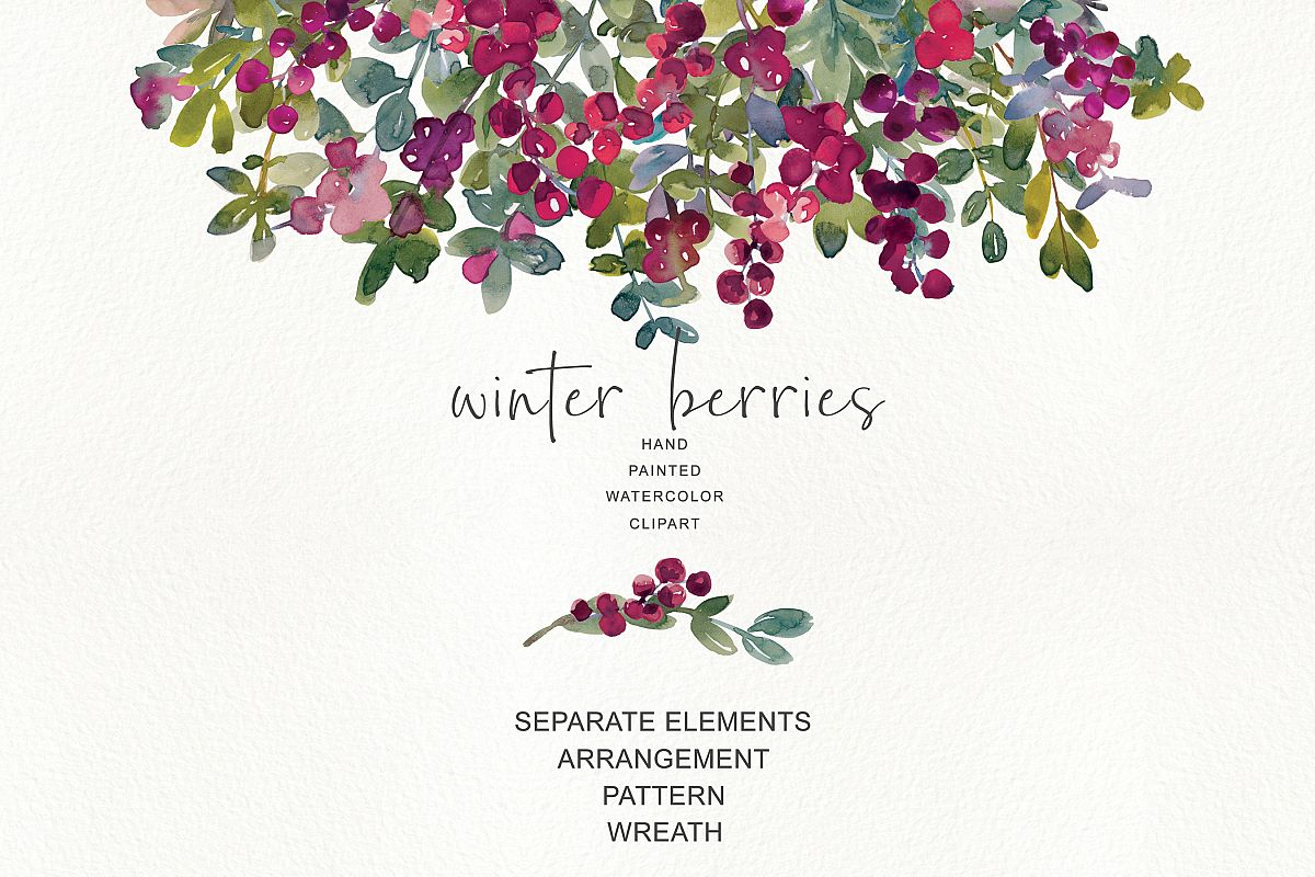 watercolor winter berry clipart