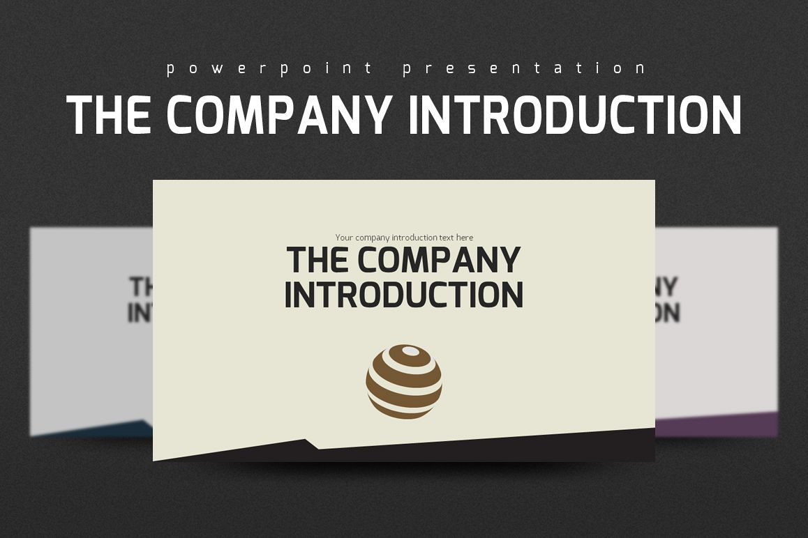 Company Introduction PPT example image 1