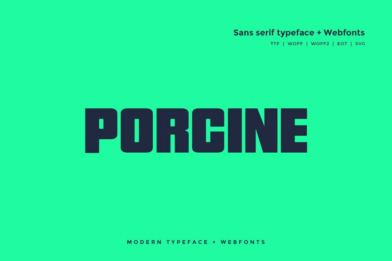 Porcine - Modern typeface with WebFont example image 1