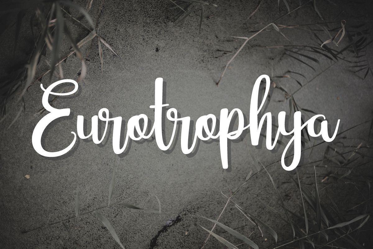 Eurotrophya example image 1