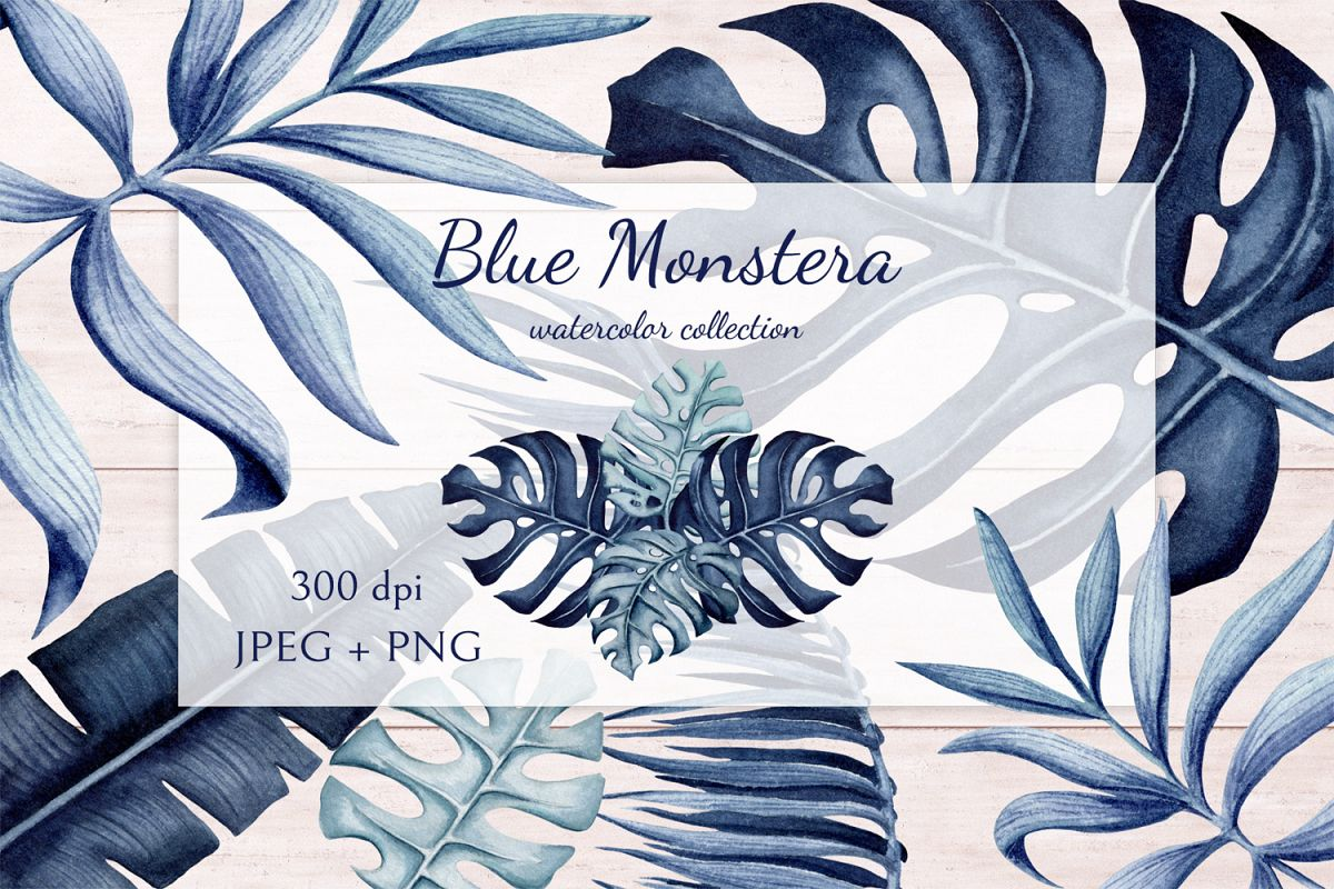 Blue Monstera example image 1
