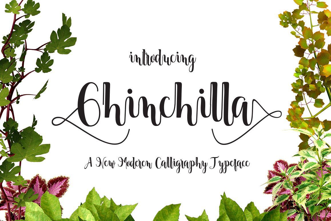 Chinchilla example image 1