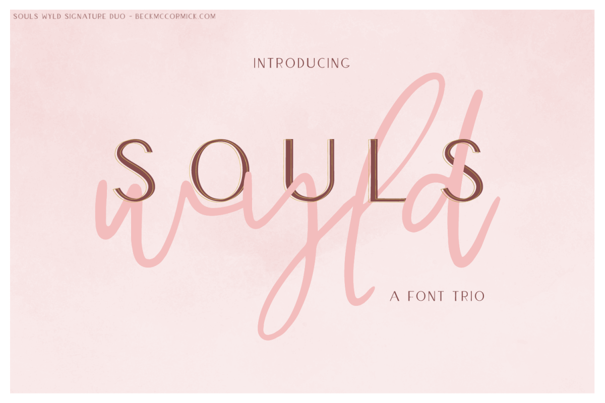 Souls Wyld Signature Script and Sans Font Trio example image 1