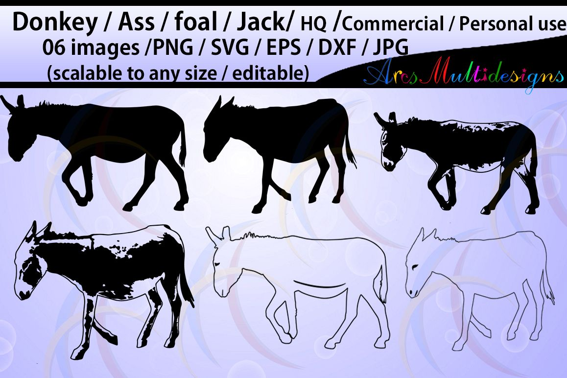 Donkey silhouette / Ass / Foal / Jack / commercial & personal use / cricut,Diy / SVG / Eps / Dxf / Png / Jpg / animal silhouettes / cameo example image 1