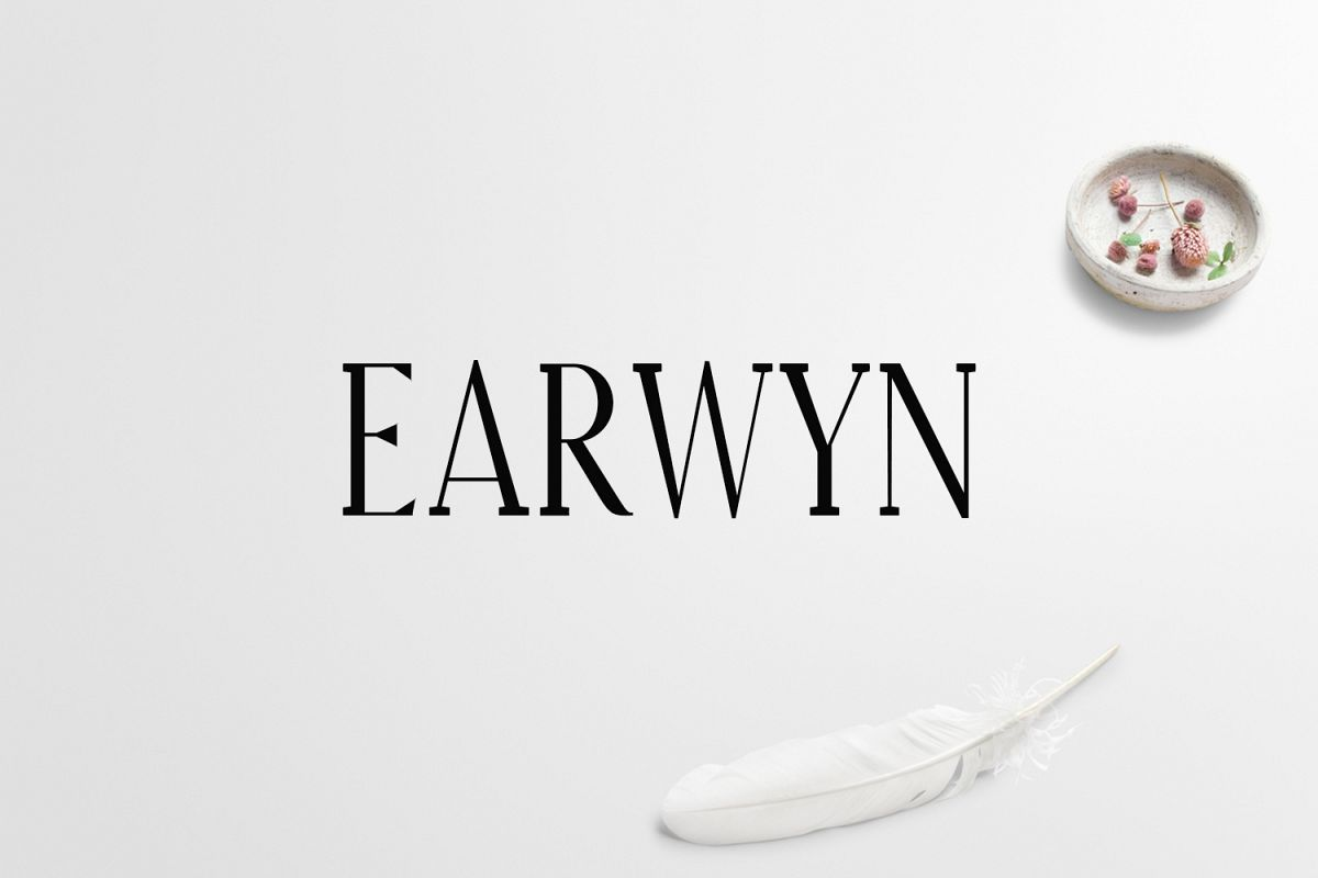 Earywn Serif 3 Font Family Pack example image 1