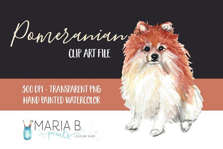 Dog Pomeranian Watercolor Clip Art Png