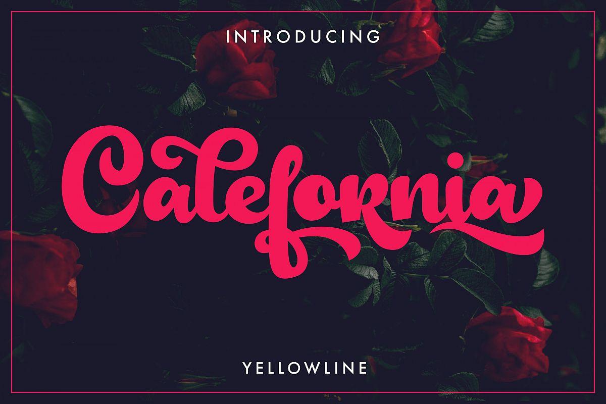 Calefornia Bold Script example image 1