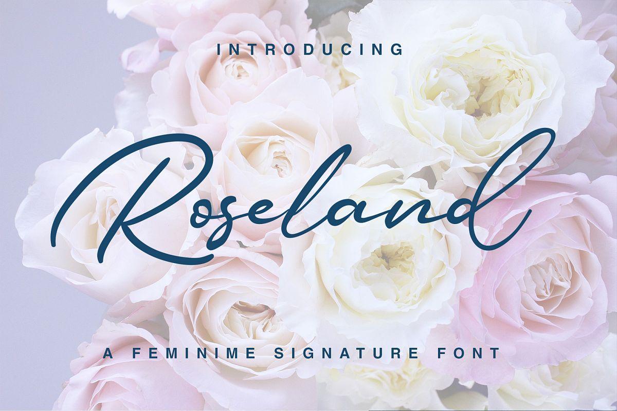 Roseland example image 1