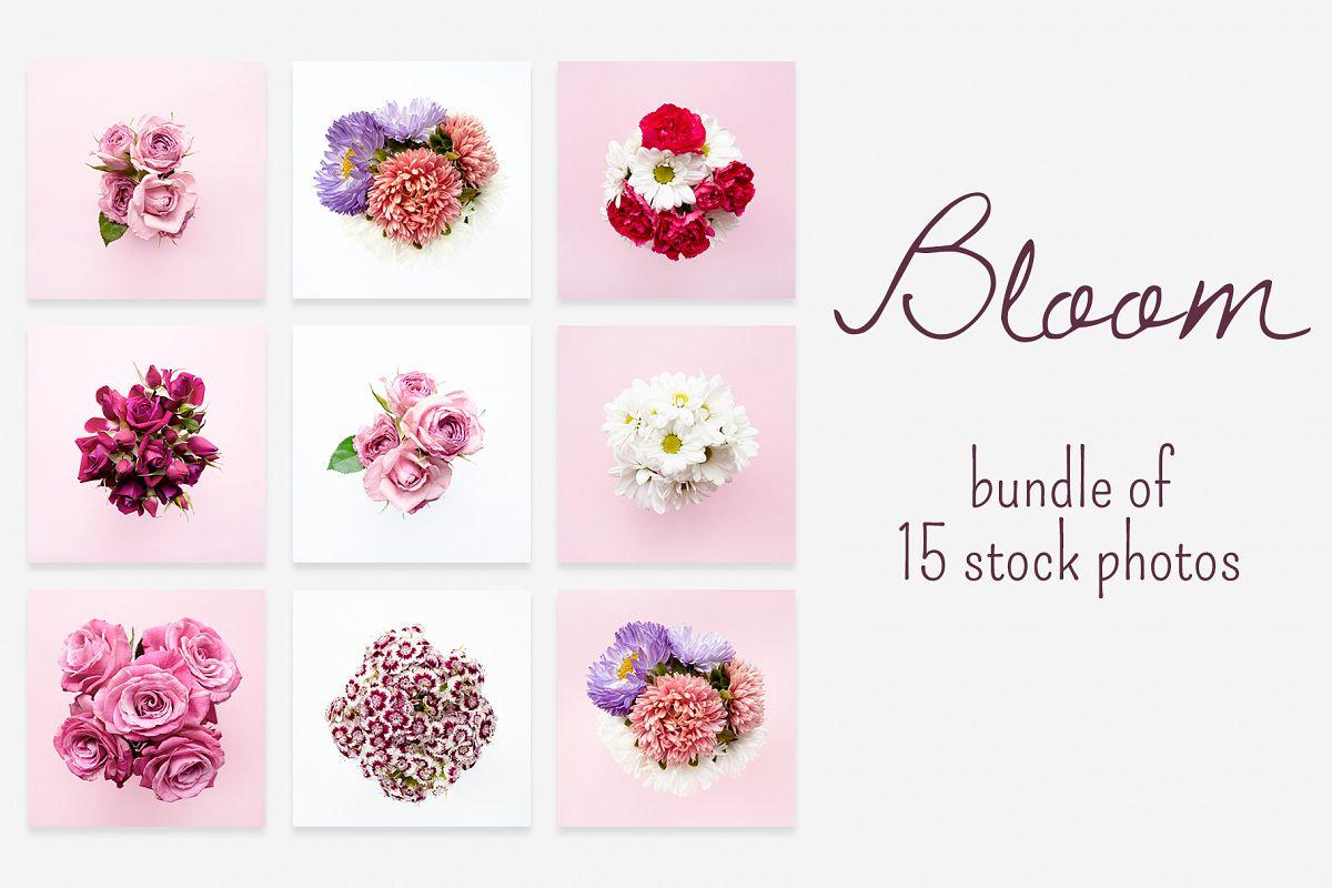 BLOOM photo bundle example image 1