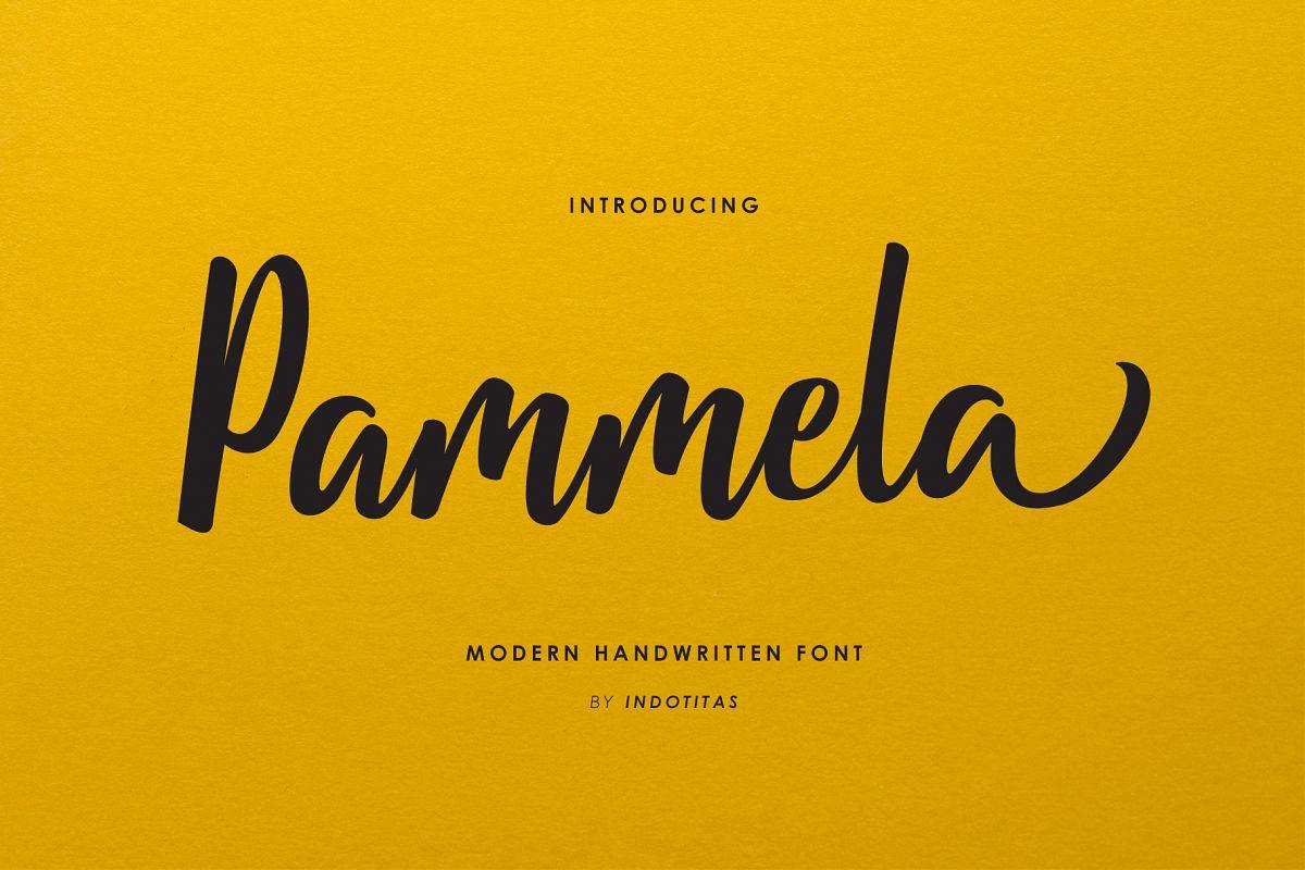 Pammela Script example image 1