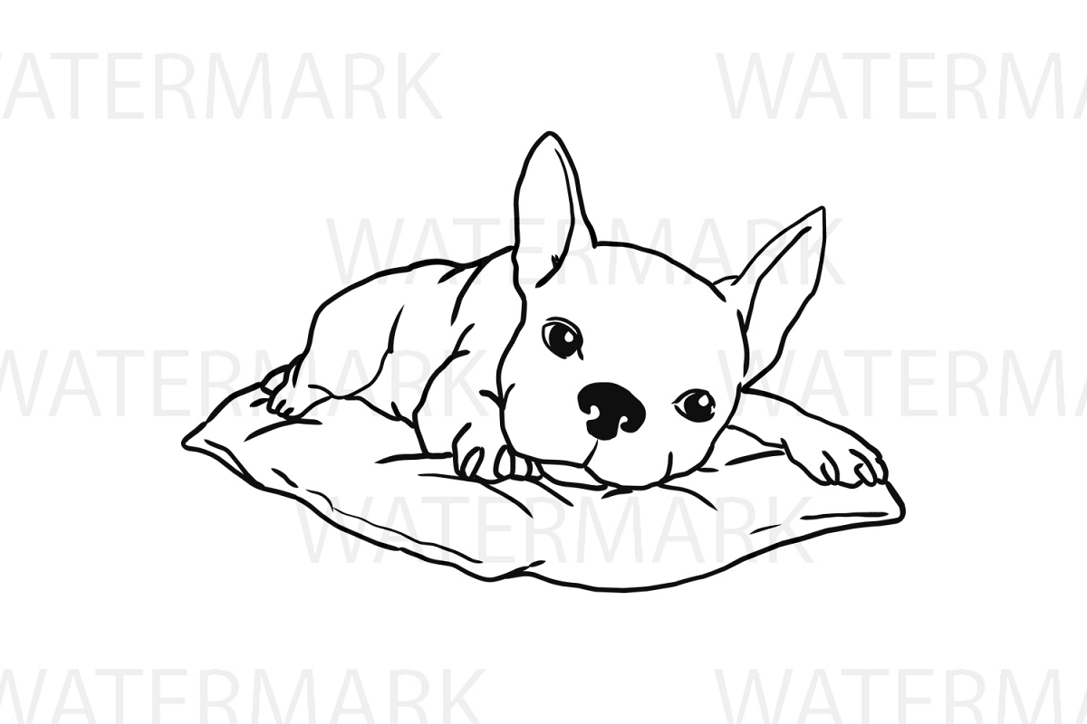 French Bulldog on a pillow - SVG/JPG/PNG Hand Drawing example image 1