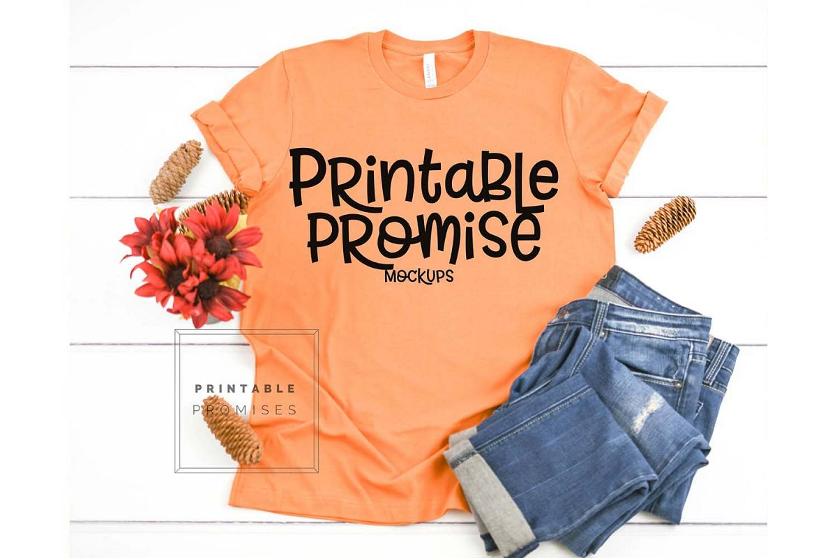 Bella Canvas 3001 Burnt Orange Shirt Mock Up example image 1