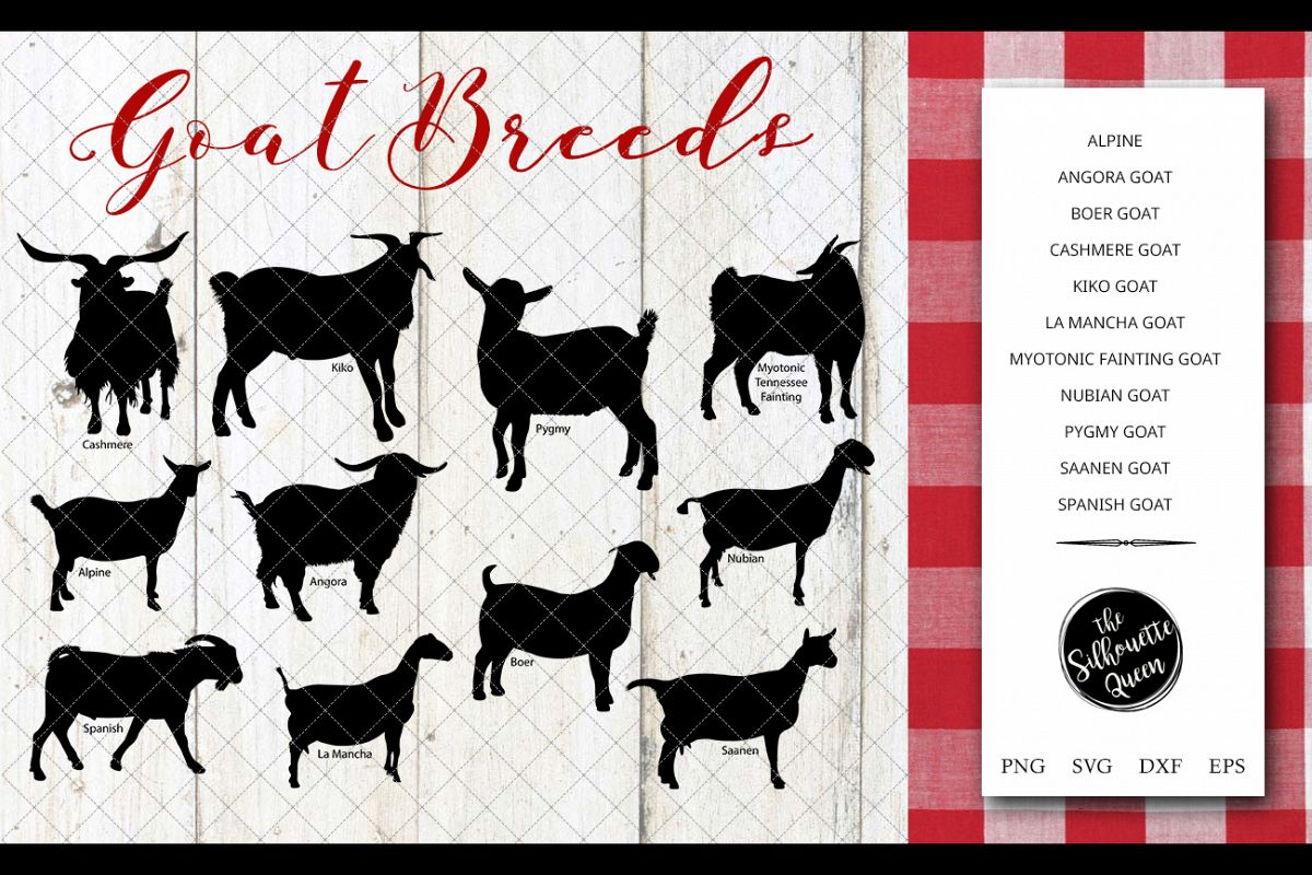 Goat Breeds Silhouette Vector svg file, cow svg cut file example image 1