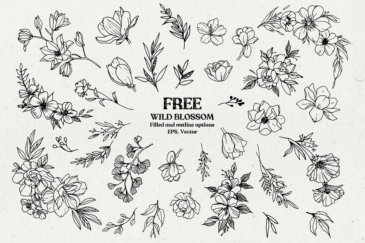 Wild Blossom - Hand sketched Floral & Botanical elements example image 1