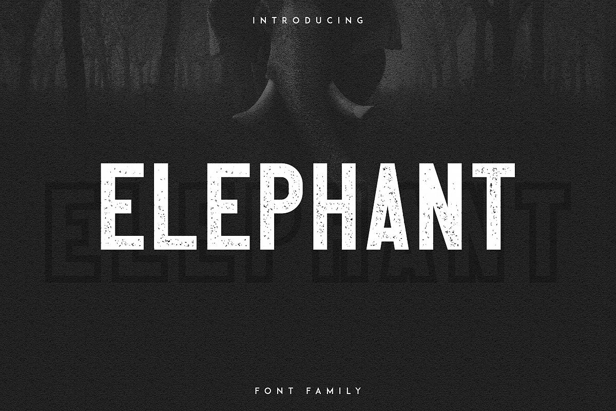 Elephant Font Family example image 1