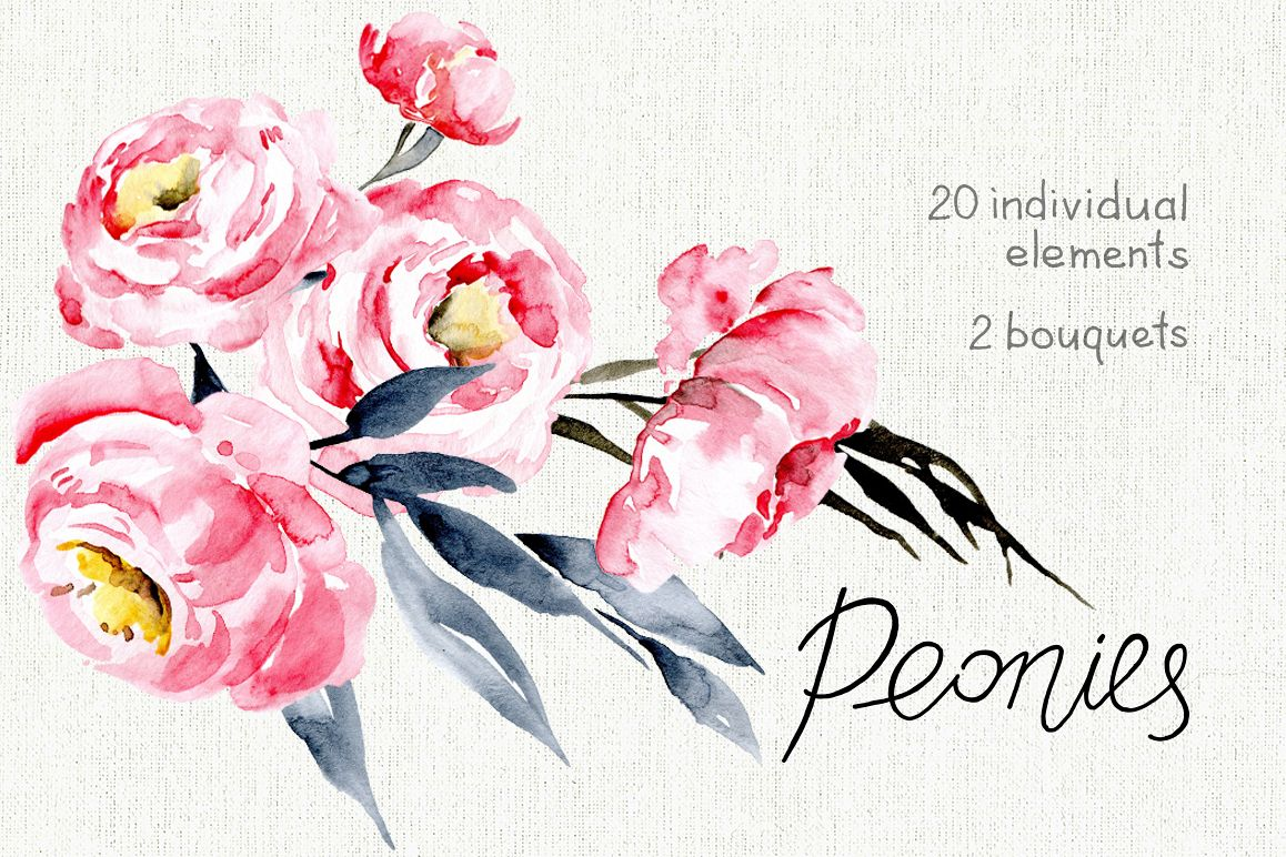 Watercolor pink peonies example image 1