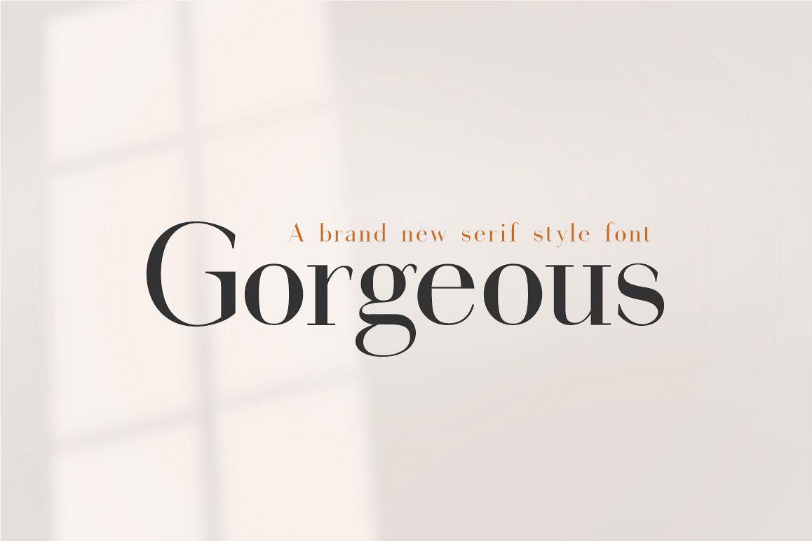 Gorgeous Serif Font example image 1