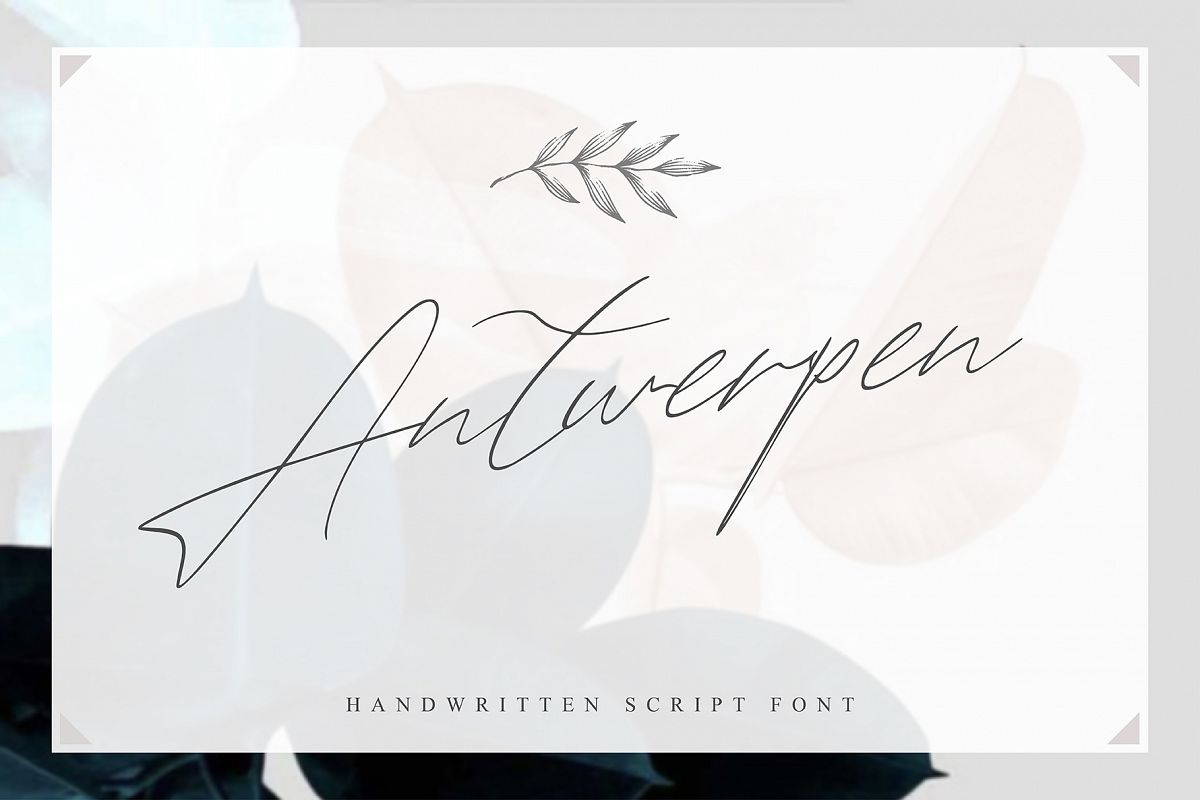 Antwerpen Script example image 1