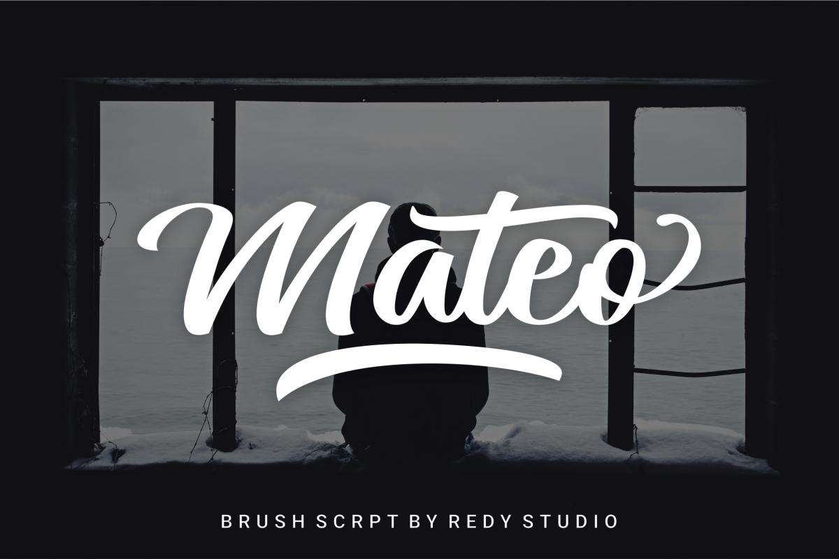 Mateo Script example image 1