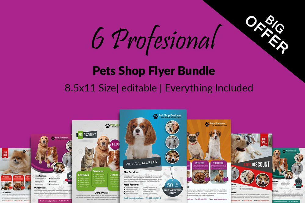 6 Pet Shop Business Flyers Bundle example image 1