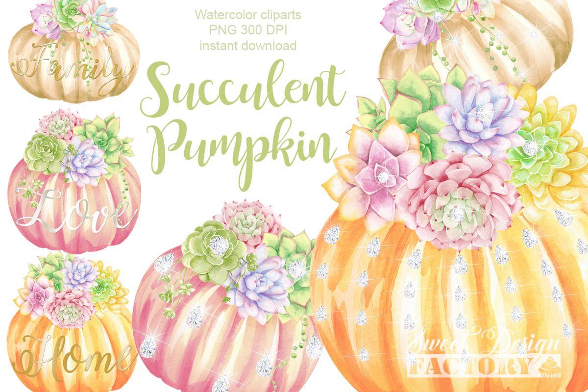Succulents And Pumpkins Clipart