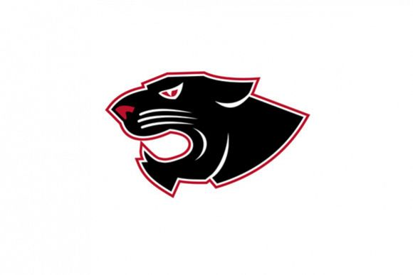 Aggressive Panther Head Icon example image 1