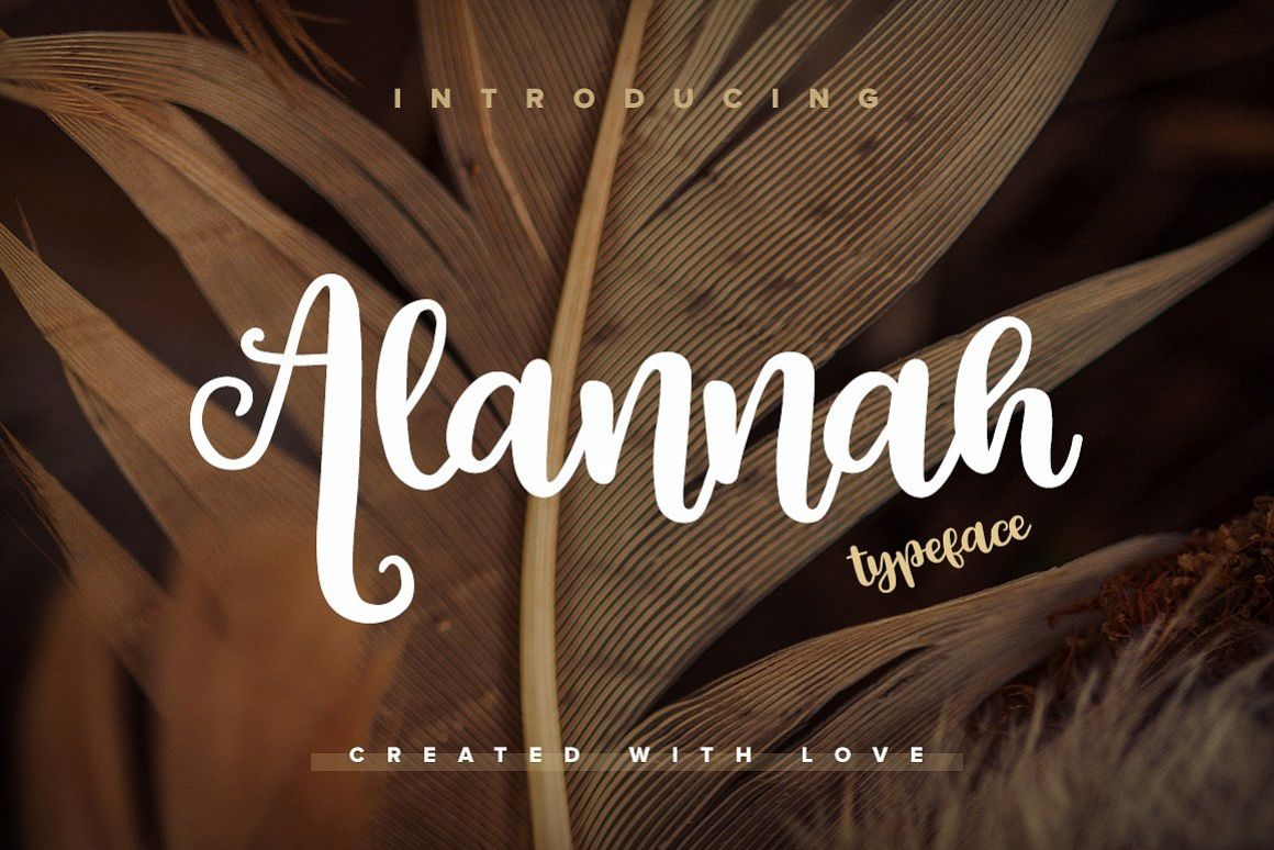 Alannah Script Font example image 1