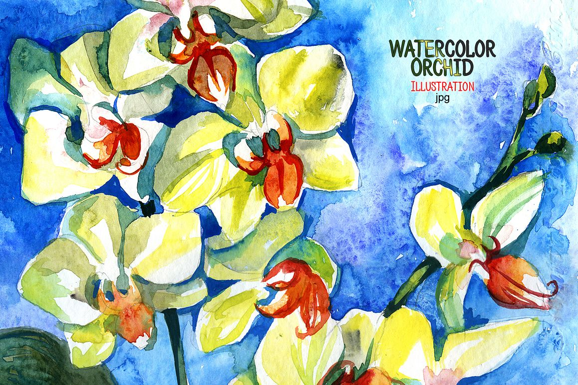 Watercolor orchid example image 1