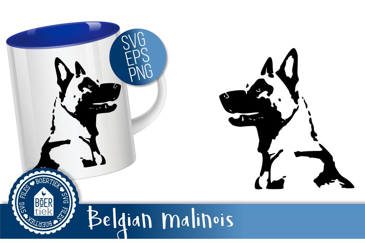 Belgian Malinois example image 1