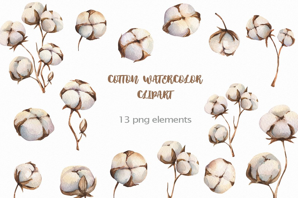 Watercolour Cotton clipart, branches winter watercolor example image 1