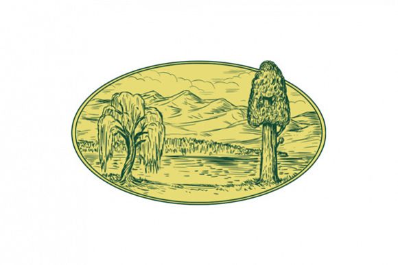 Willow And Sequoia Tree Lake Mountains Oval Drawing example image 1