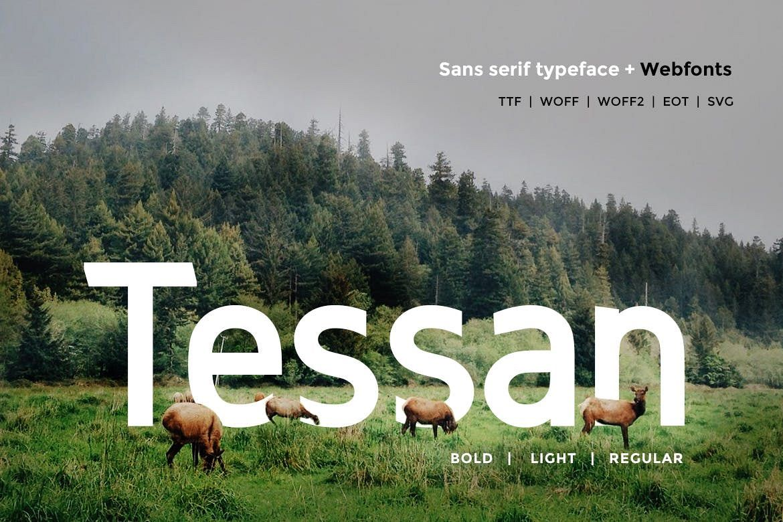 Tessan Sans - Modern Typeface WebFont example image 1