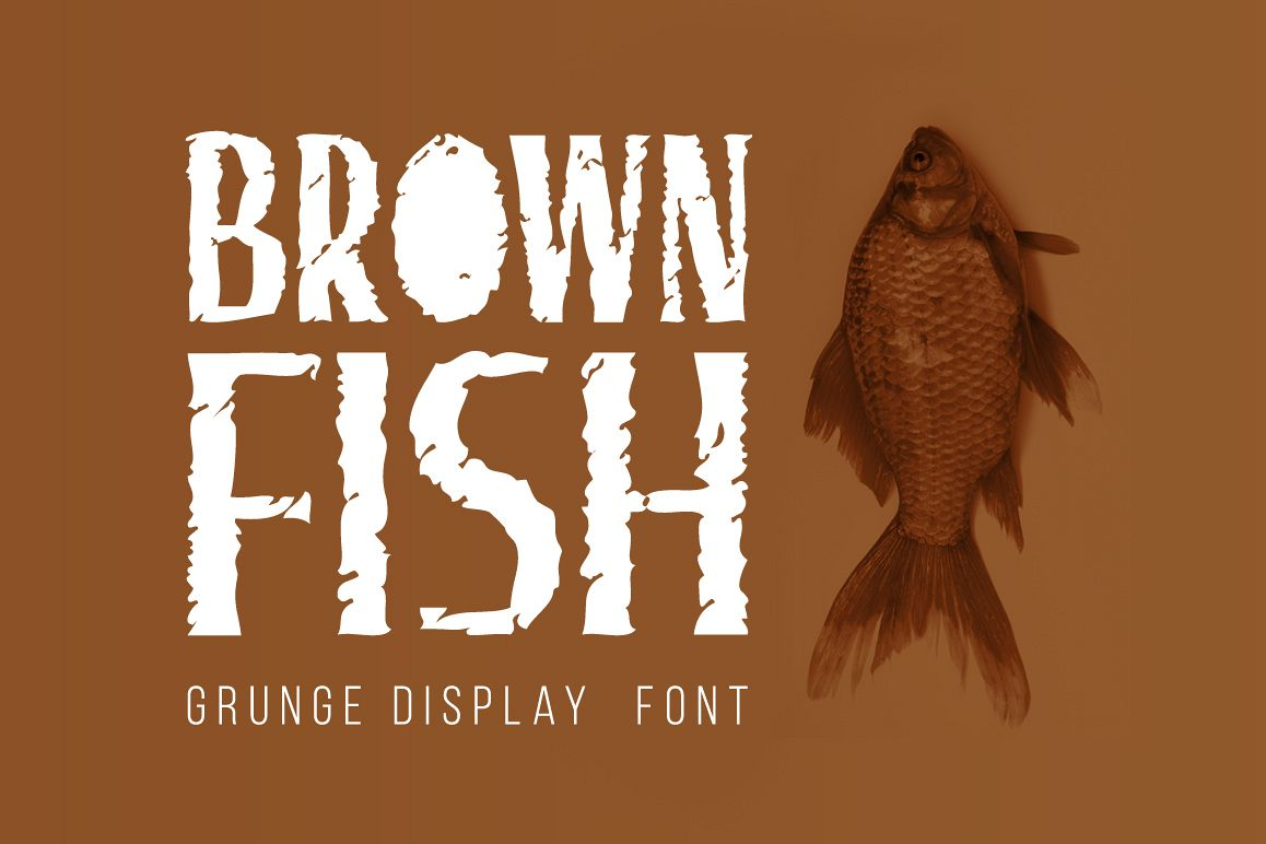 Brown Fish example image 1