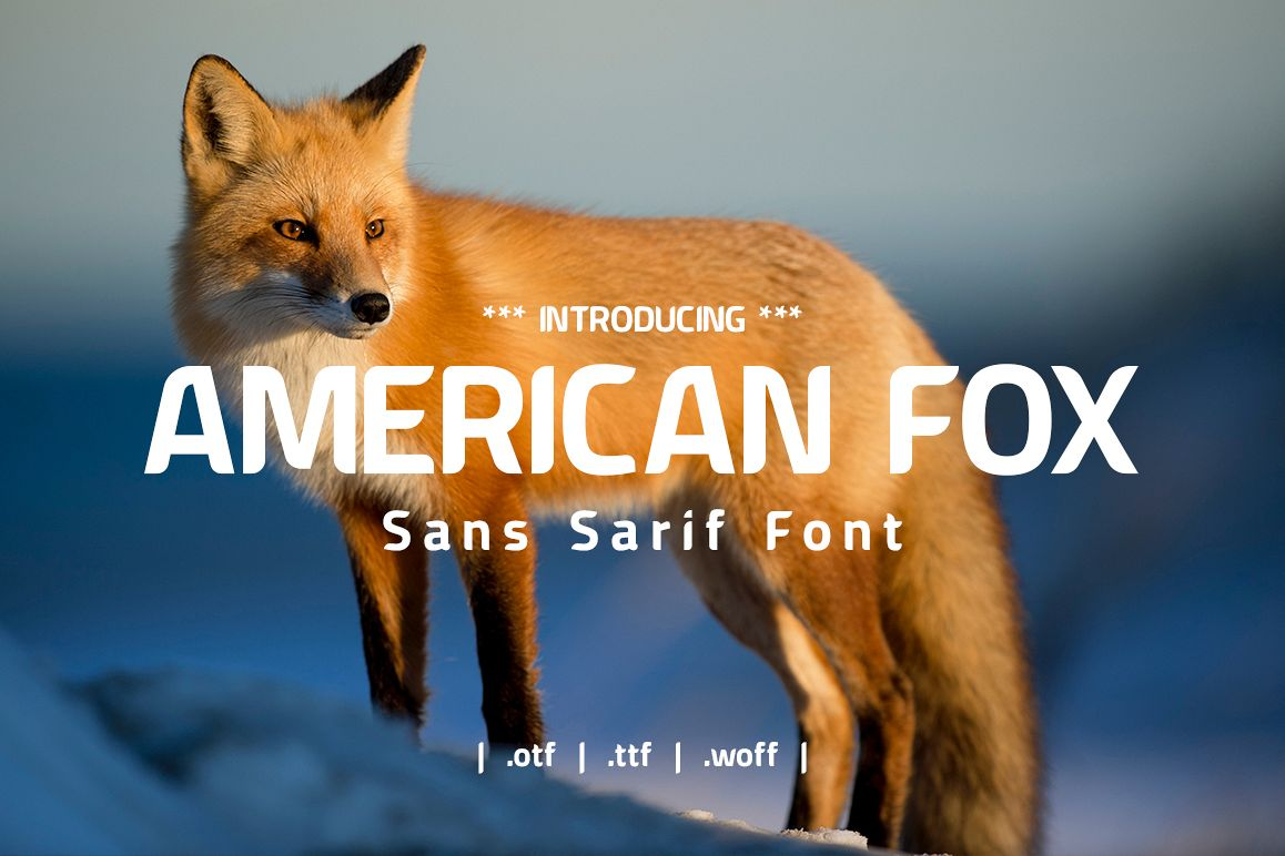 American Fox Font example image 1