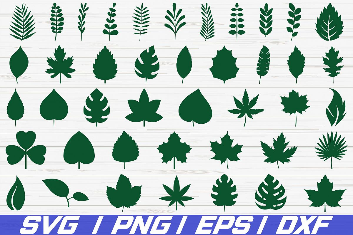 42 Paper Leaves / SVG / Cut File / Leaf Templates / Cricut example image 1