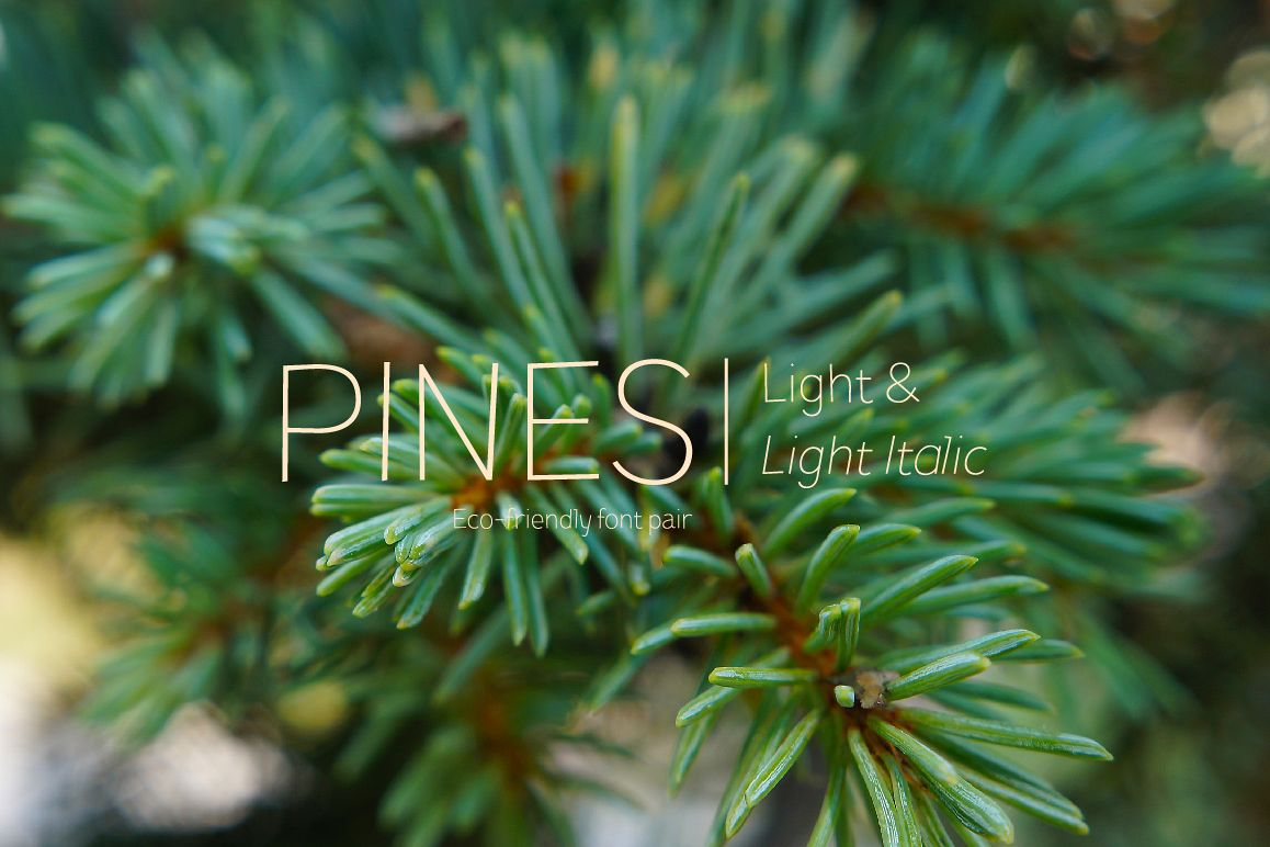 Pines Light & Pines Light Italic example image 1