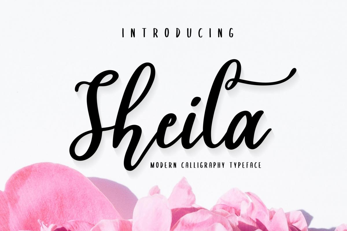 Sheila Script example image 1
