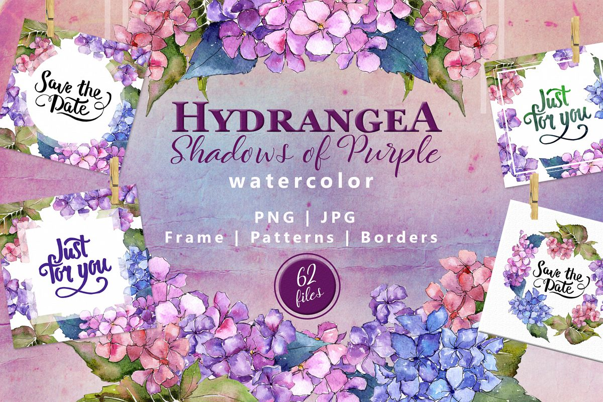 Hydrangea PNG watercolor flower set  example image 1