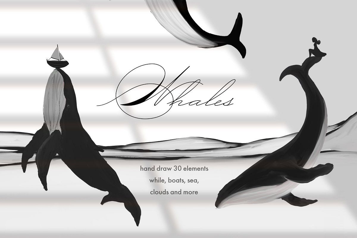 Black&White Whales Illustrations example image 1