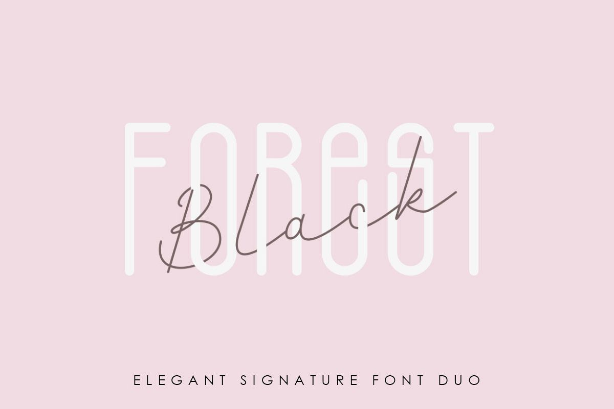 Black Forest l Elegant Font Duo example image 1