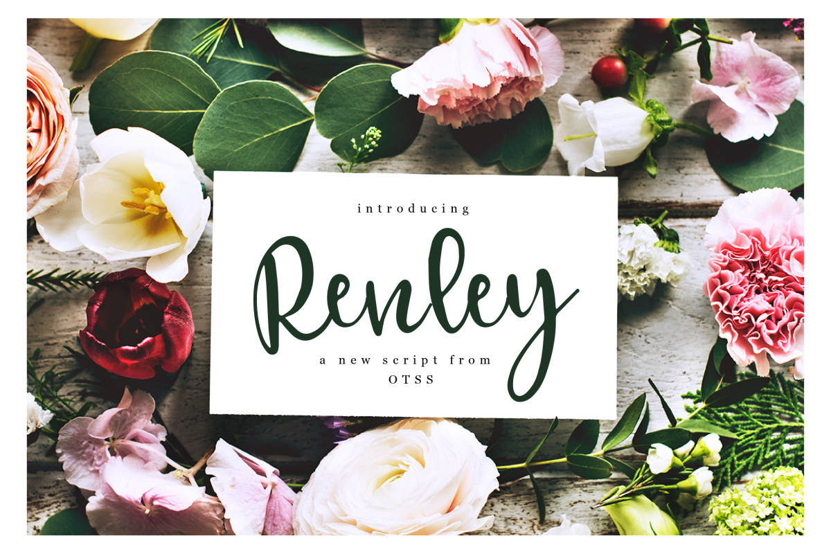 Renley - An Everyday Script example image 1
