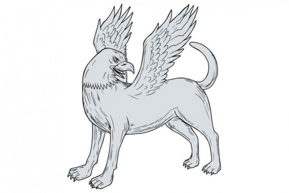 Chamrosh Side Drawing example image 1