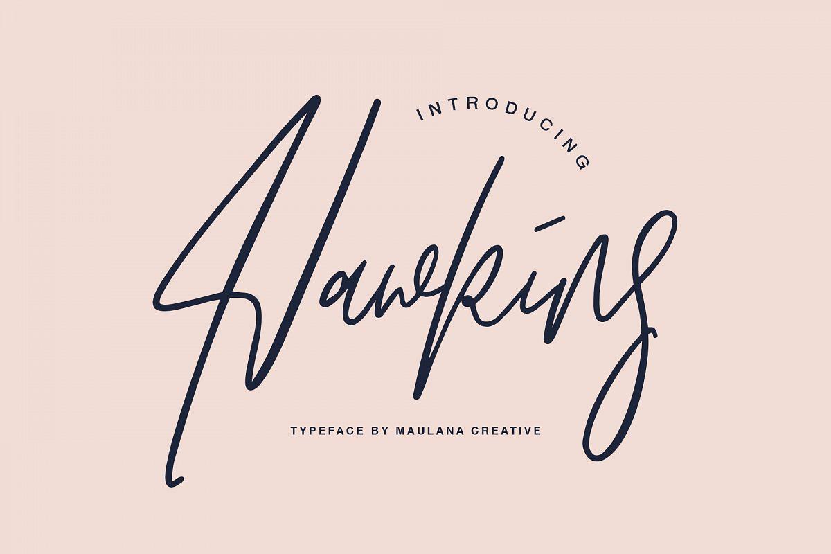 Hawkins Signature Brush Font example image 1